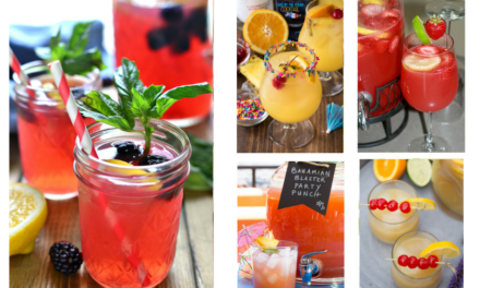 12 Party Punch Recipes to Make for Your Next Party
